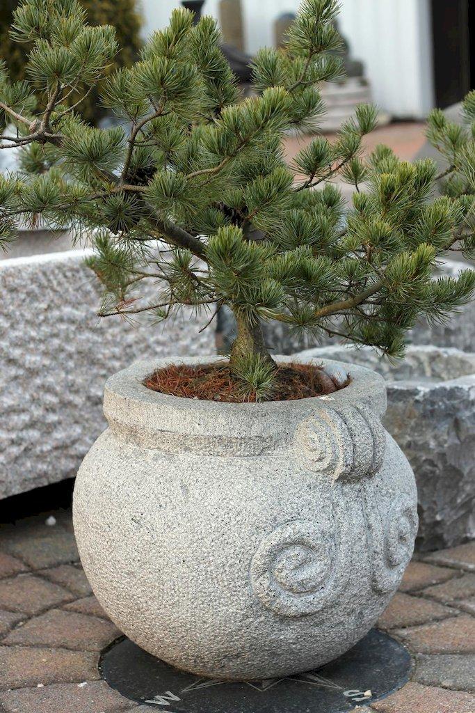 Pflanztrog Steintrog Steinkübel Aus Granit